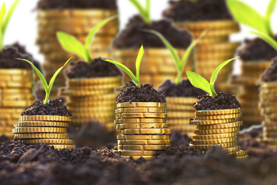 list five agro based industries in nigeria